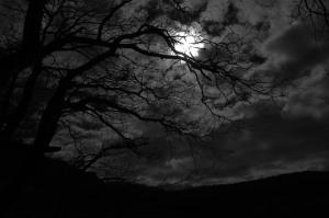 dark_night_by_rad_wulf-d5xx0pd (1)