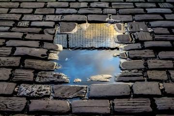 reflection-2922045_960_720.jpg