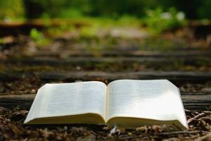 bible-3370021_960_720